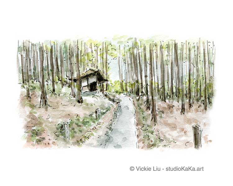 Forest Trail Watercolour Art