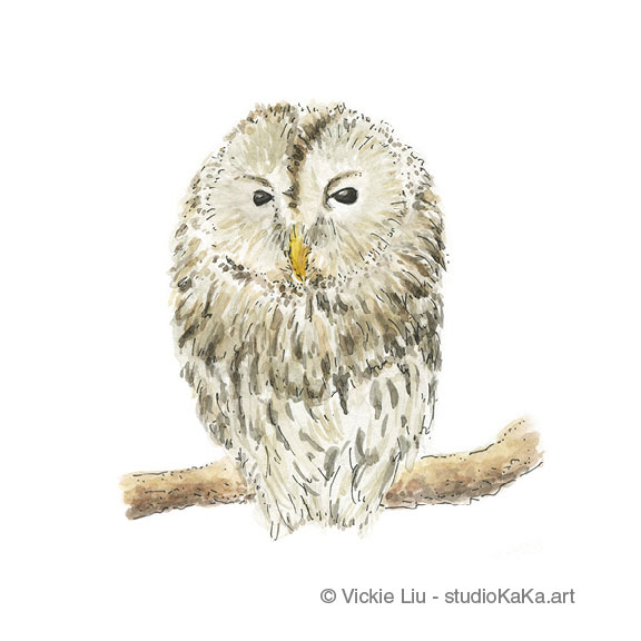 Sleepy Owl Art Print