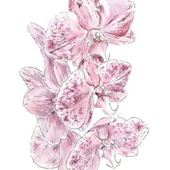 Purple Watercolour Botanical Illustration