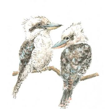 Two Kookaburras art print