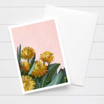 Pink and Yellow Daisy Flower Card