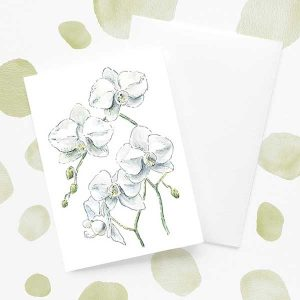 White orchid flower card