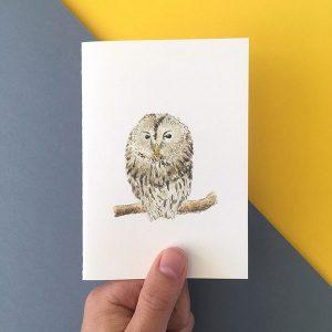 Card Sleepy Owl