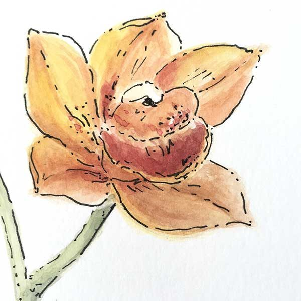 Orange Orchid Watercolour Painting