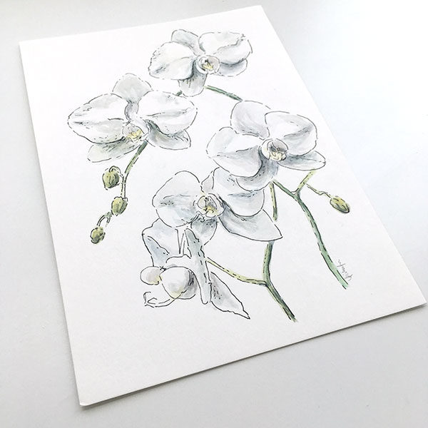 White Orchid Watercolour Painting