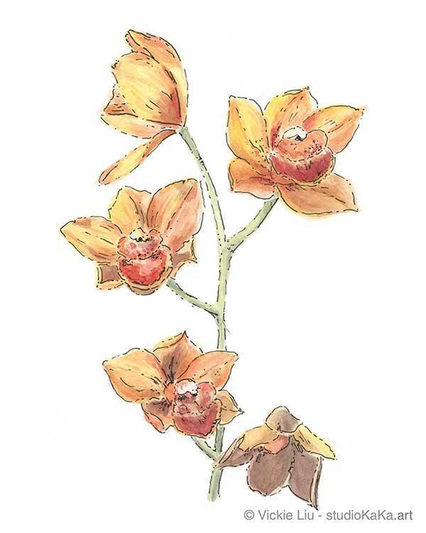 orange orchid original watercolour painting