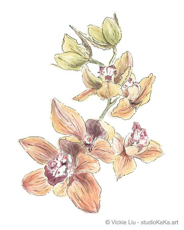 orange orchid original watercolour