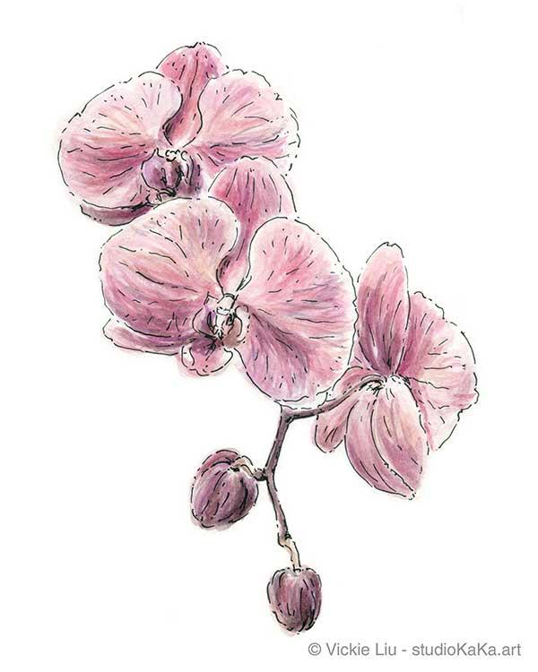 purple orchid watercolour original