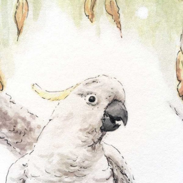 Cockatoo Bird Art Print