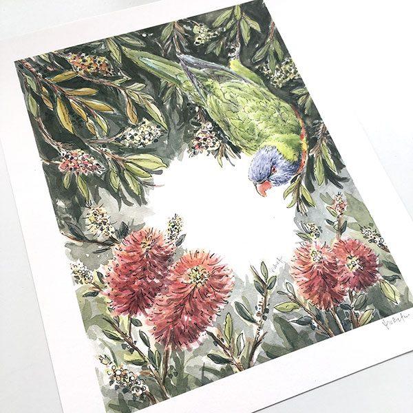 Rainbow Lorikeet Bottlebrush Print