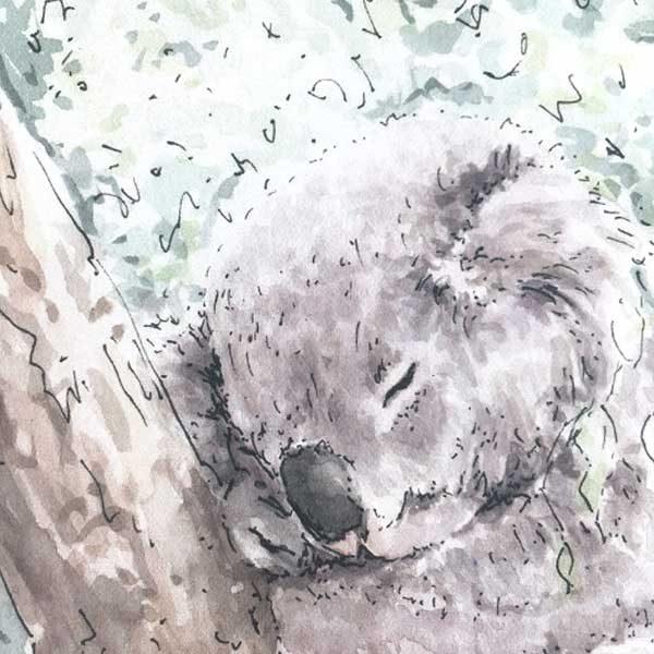 sleeping koala watercolour print