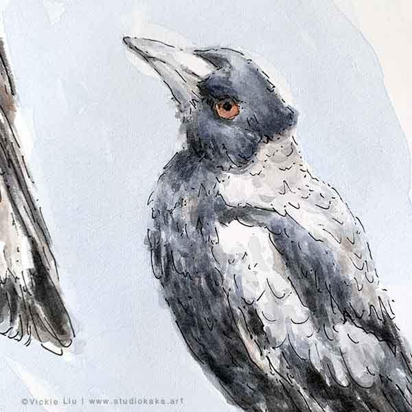 Australian Magpie Original Watercolour Painting