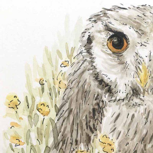 owl watercolour art