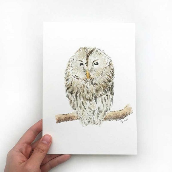 owl watercolour original