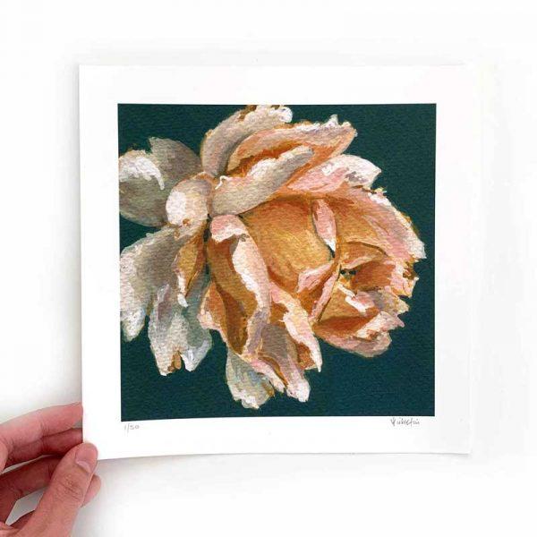 Amber flower art print