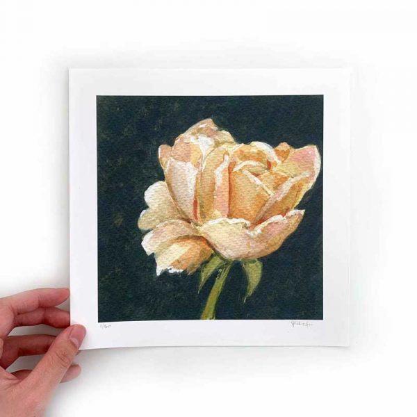 cream flower art print