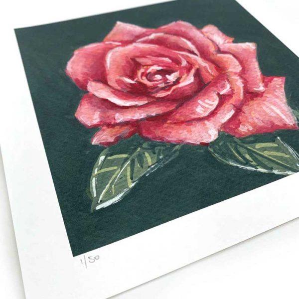 dark pink rose painting print