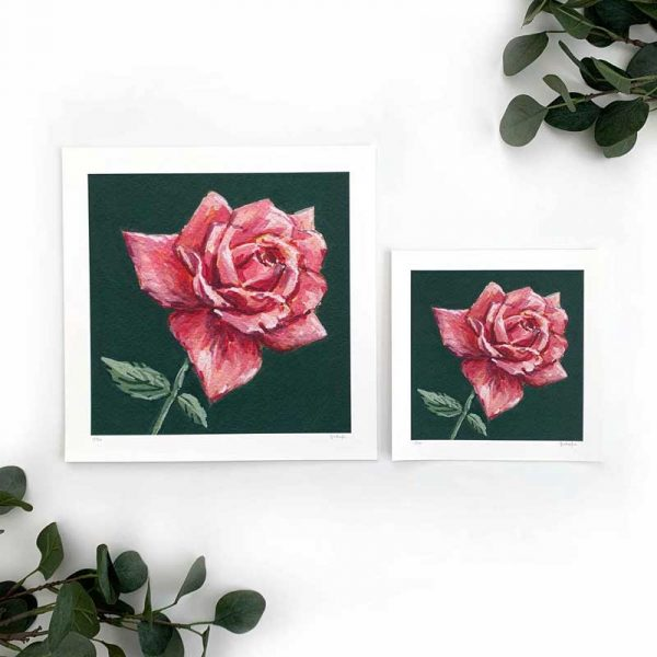 Dark Pink Rose Art Print Sizes