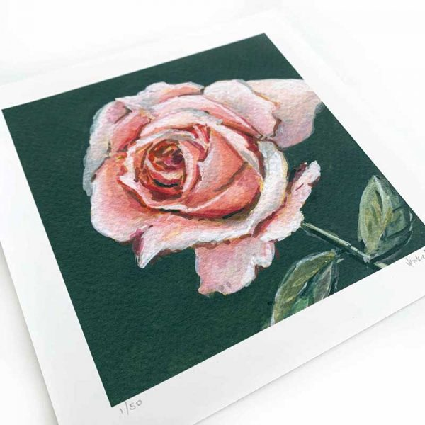 light pink rose painting print