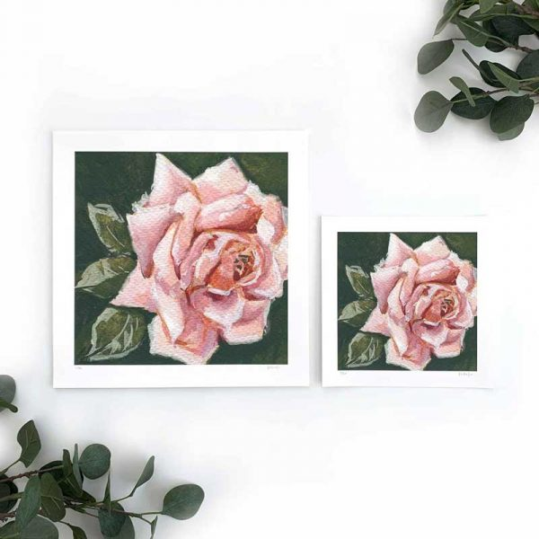 Light Pink Rose Art Print Sizes