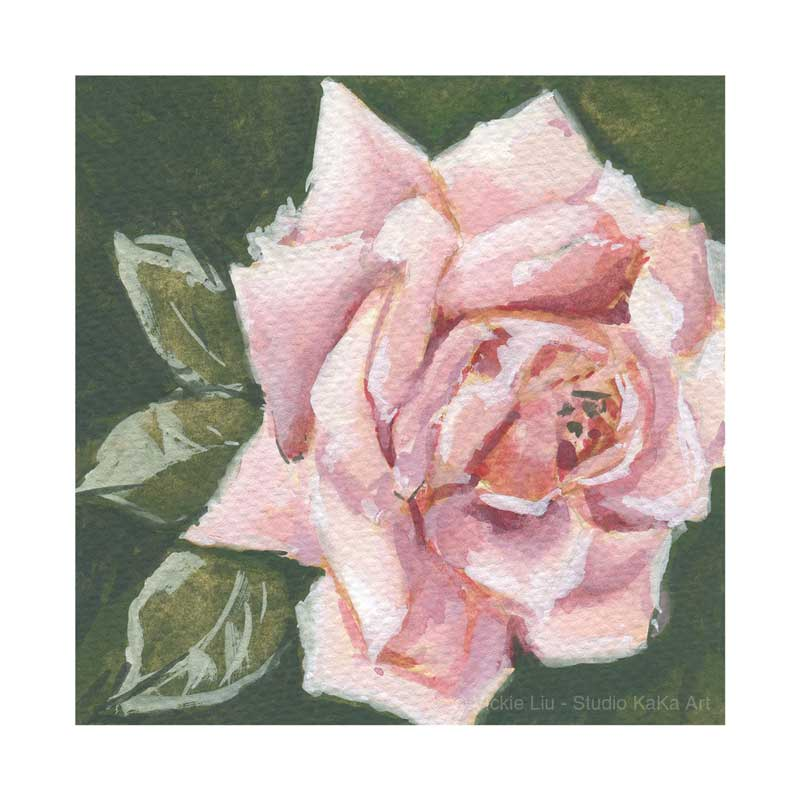 Light Pink Rose Pink No.2