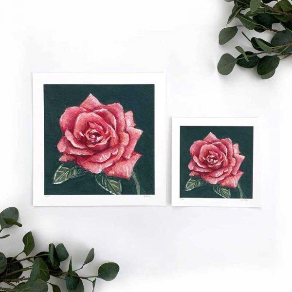 Magenta Flower Art Print Sizes