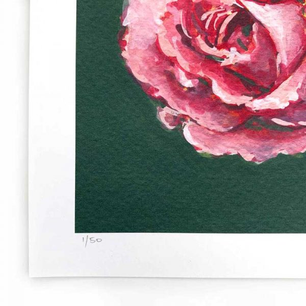 magenta rose limited edition print detail