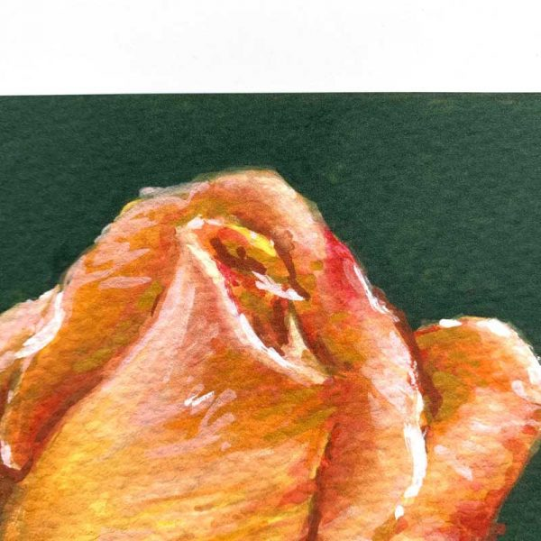 orange botanical art print closeup