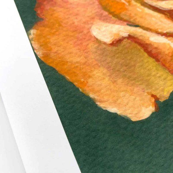 orange rose giclee print detail