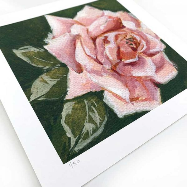 Pale Pink Rose Giclee Print