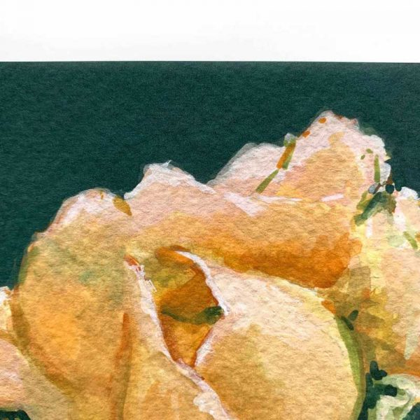 peach botanical art print closeup