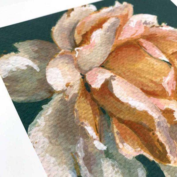 peach rose giclee print detail
