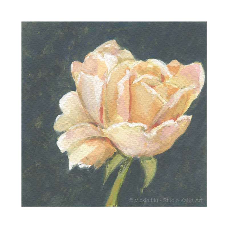Peach Rose Print No.1