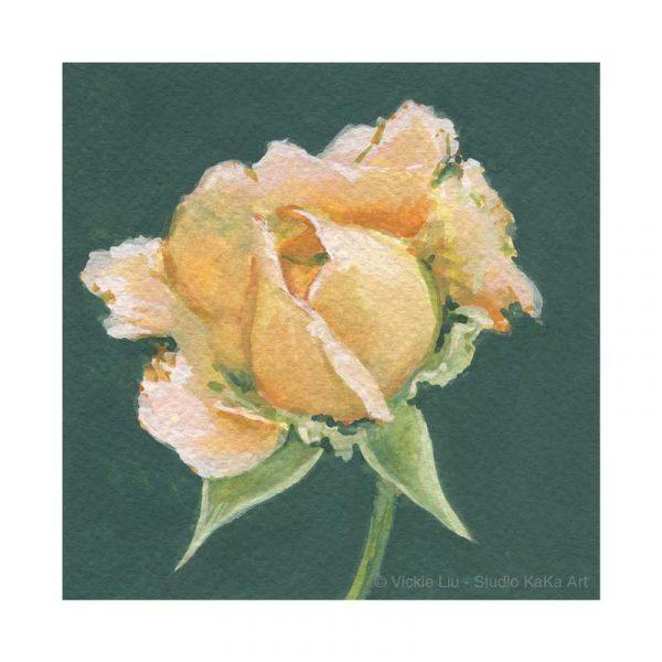 Peach Rose Print No.3