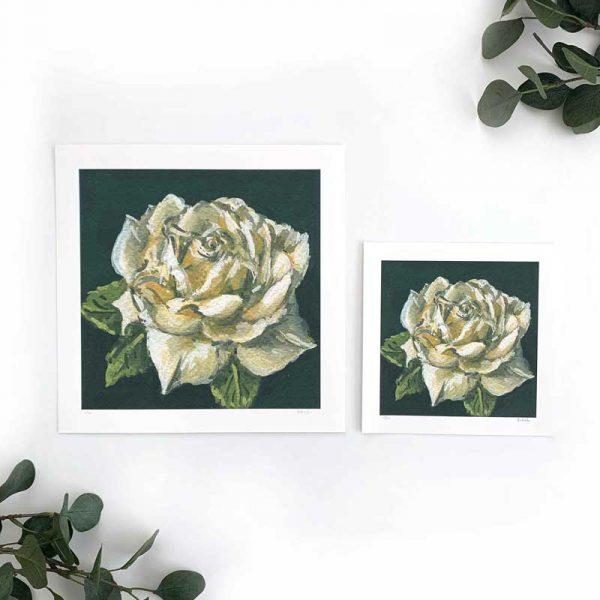 White Flower Art Print Sizes