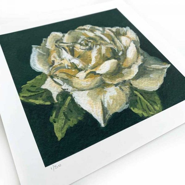 white rose painting giclee print