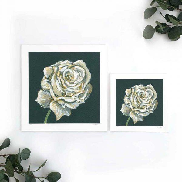 White Rose Art Print Sizes