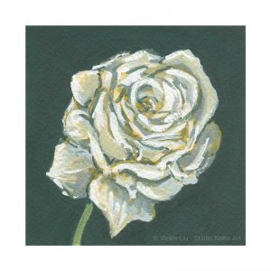 White Rose Print No.1