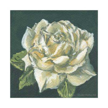 White Rose Print 2