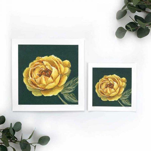 yellow botanical fine art print sizes