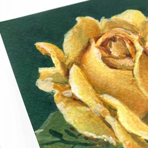 yellow rose giclee print