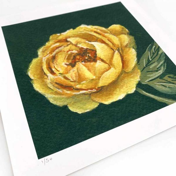 yellow rose painting giclee print