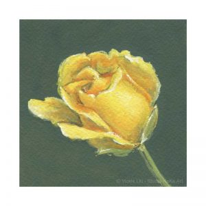 Yellow Rose Print No.3