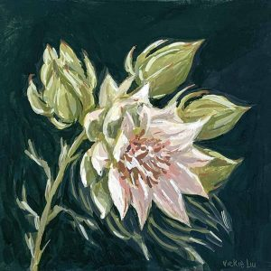 blushing bride protea flower painting