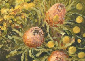 billy buttons and banksia print