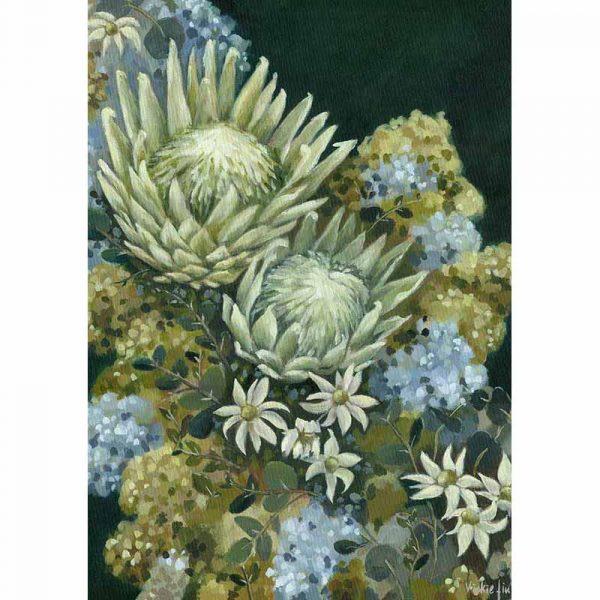 Flannel Flower Protea Art Print