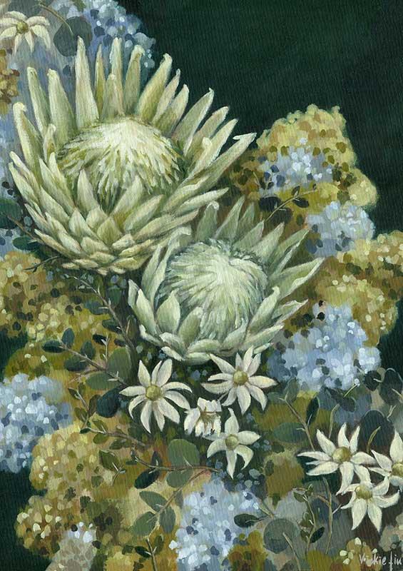 Flannel Flower Protea Green Art Print