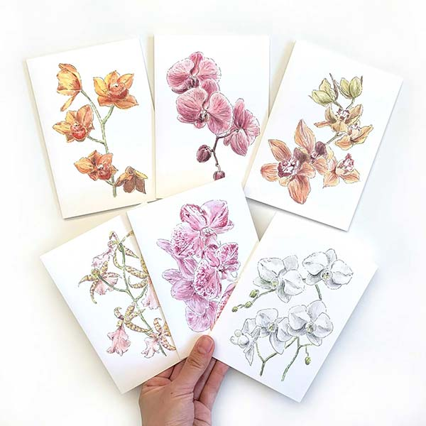 Orchid flower card pack