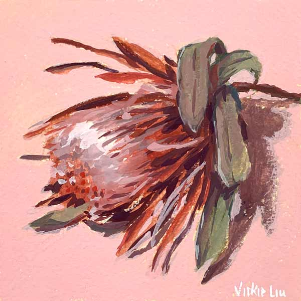 Protea on pink painting