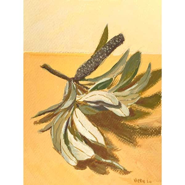 Banksia and Leaves on Orange Study